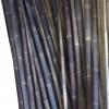 bamboopole-black2